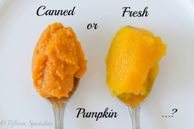 fresh pumpkin vs canned pumpkin for pie
