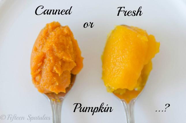 Fresh Vs Canned Pumpkin I Put Them To The Test