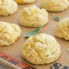 Pumpkin Sage Drop Biscuits from The Gourmet Kitchen