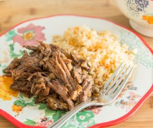 slow-cooker-shredded-mexican-beef-fifteen-spatulas-6