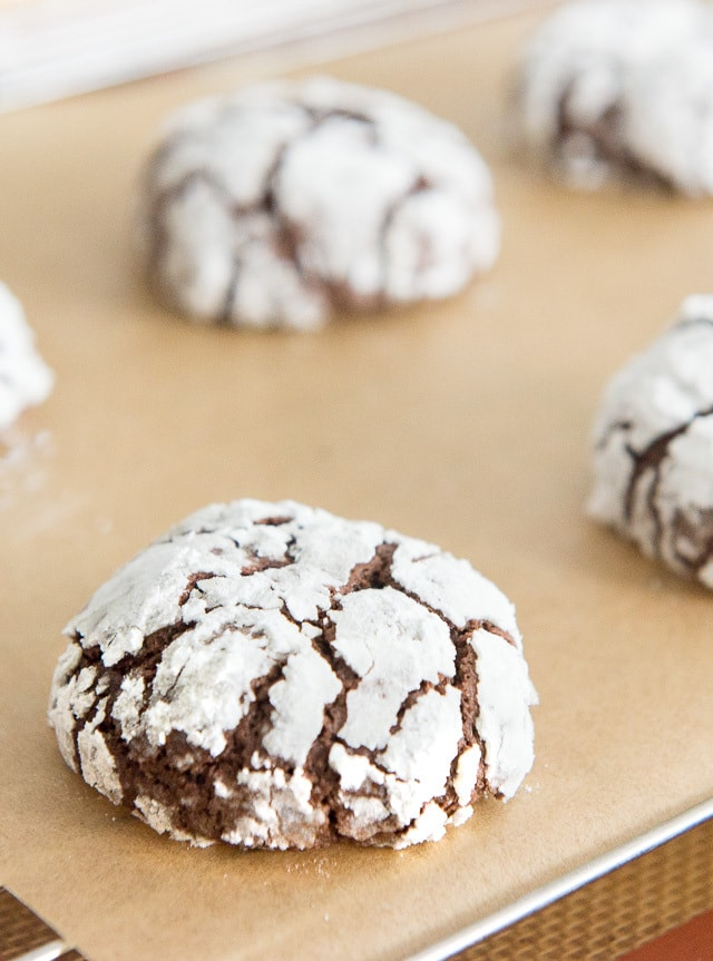 Chocolate Crinkle Cookies - Christmas Recipes