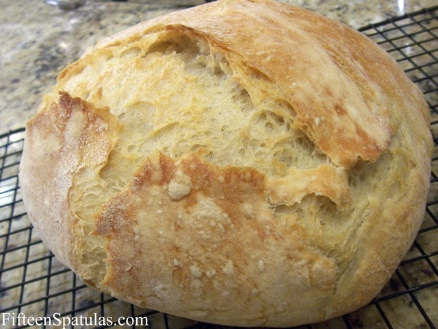 A Bread Recipe For Those Who Don T Know How To Boil Water Fifteen Spatulas