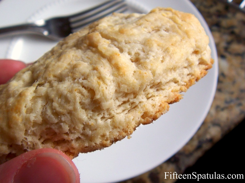 Biscuit Made from Scratch with Golden Bottom