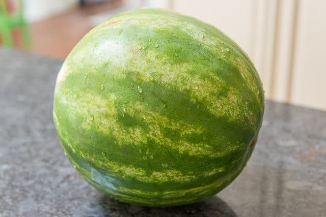 Watermelon Without a Field Spot on Countertop Gives Indication for How to Tell if a Watermelon is Ripe