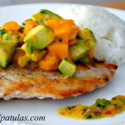 Seared Snapper - On a Plate with Mango Avocado Salsa on top and Rice in Background