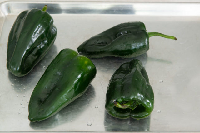 Four Poblano Chile Peppers on a Sheet Pan Raw