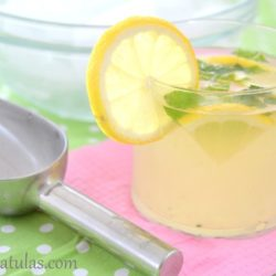 mint Lemonade with ice scoop