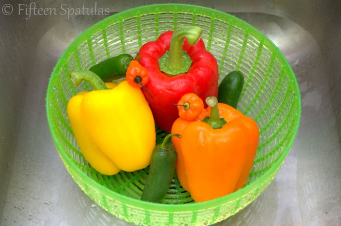 Tri-color Bell Peppers and Jalapenos in Salad Spinner