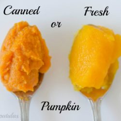 Side by Side Spoonfuls of Canned and Fresh Pumpkin Puree