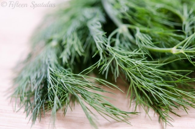 A close up of fresh dill