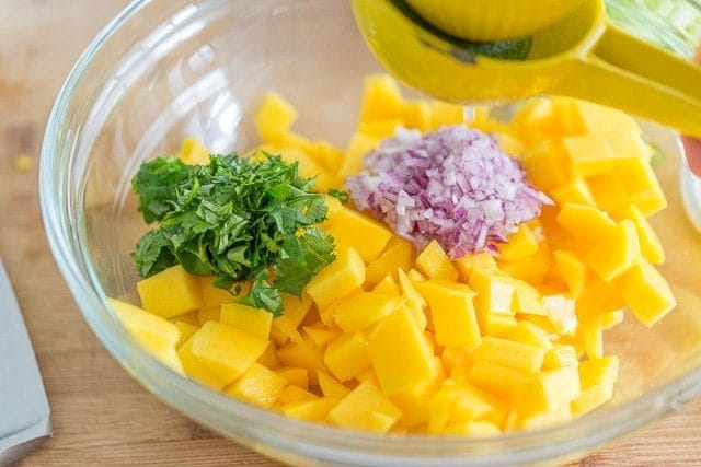 Best Mango Salsa - Easy Mango Recipes