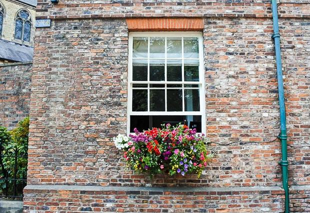 A flower pot in front of a brick building