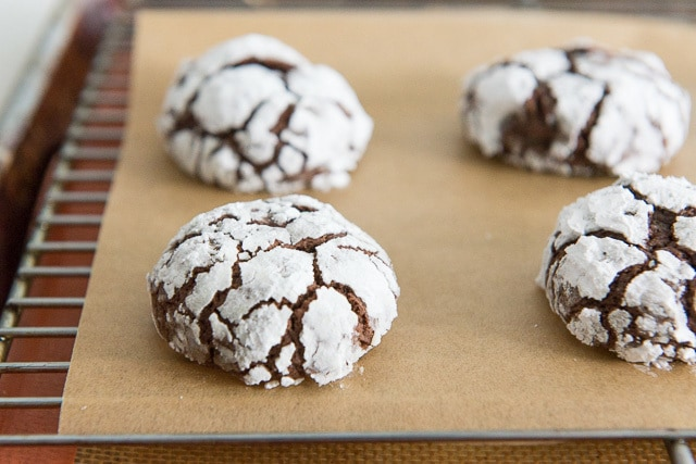 Crinkle Cookies - In Rows On Parchment Paper with Cracked Design
