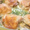 Seared Golden Bone-In Chicken Thighs In Parmesan Cream Sauce With Sprigs of Fresh Thyme