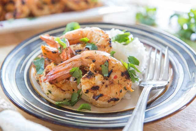 Grilled Chipotle Marinated Shrimp With White Rice and Cilantro On Plate With Fork