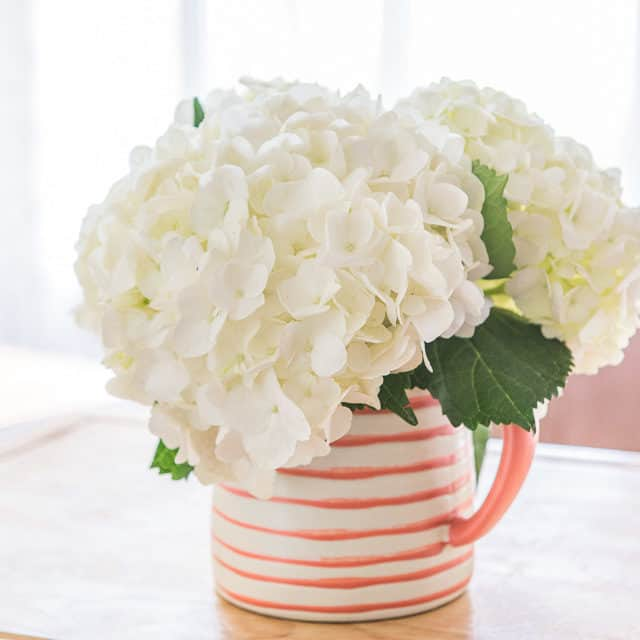 White Hydrangeas In Hearth And Hand Pink Striped Ceramic Pitcher
