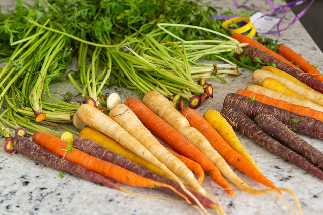 Purple carrot, orange carrot, and yellow carrot - Trimmed for Roasting