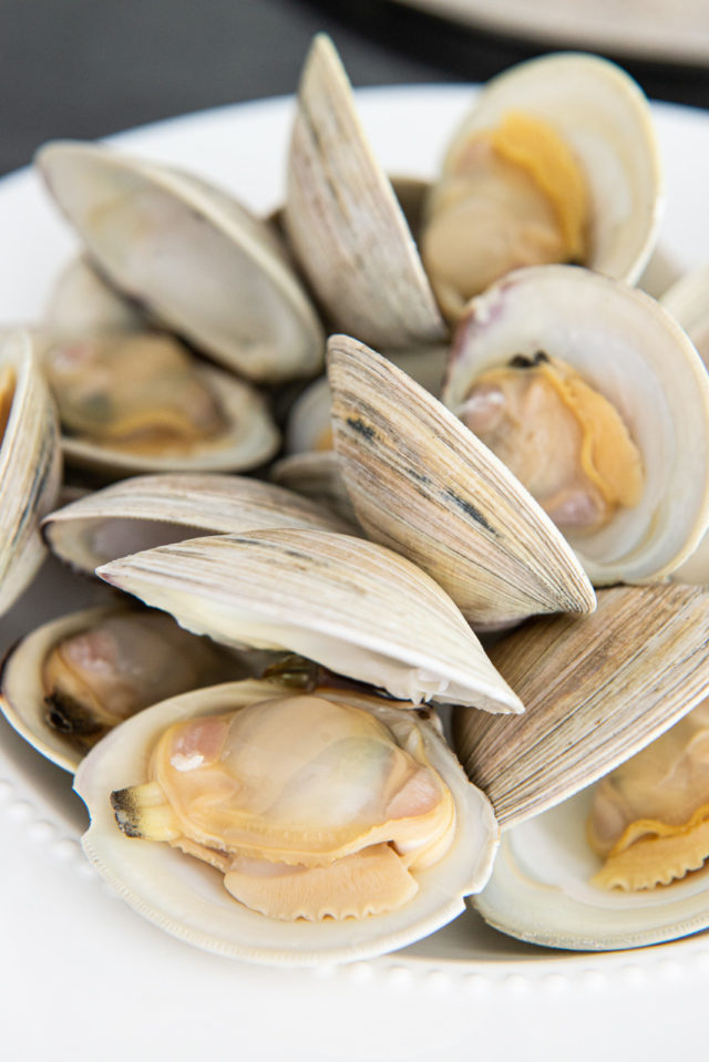 Littleneck Clams Steamed Until Open on White Plate