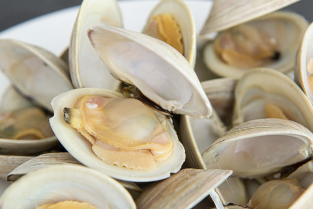 Purged and Opened Littleneck Clams in a Pile
